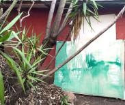 Vivian Suter Studio view in Panajachel, Guatemala, 2015  Courtesy of the artist and Proyectos Ultravioleta